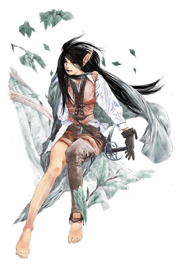 Artworks - Download - Dragon Raja - Free To Play MMORPG
